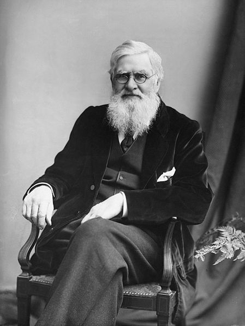 Alfred Russel Wallace. Source: London Stereoscopic & Photographic Company