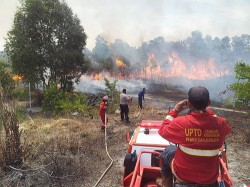 Firefighters trying to contain a forest fire in Banjarbaru, Indonesia on 6 Oct 2015.  Source: Amirin