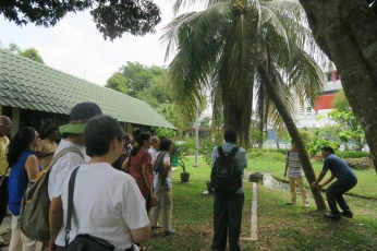 Dr Adrian Loo brought us on an exotic palms trail in Science Centre Singapore's Ecogarden!